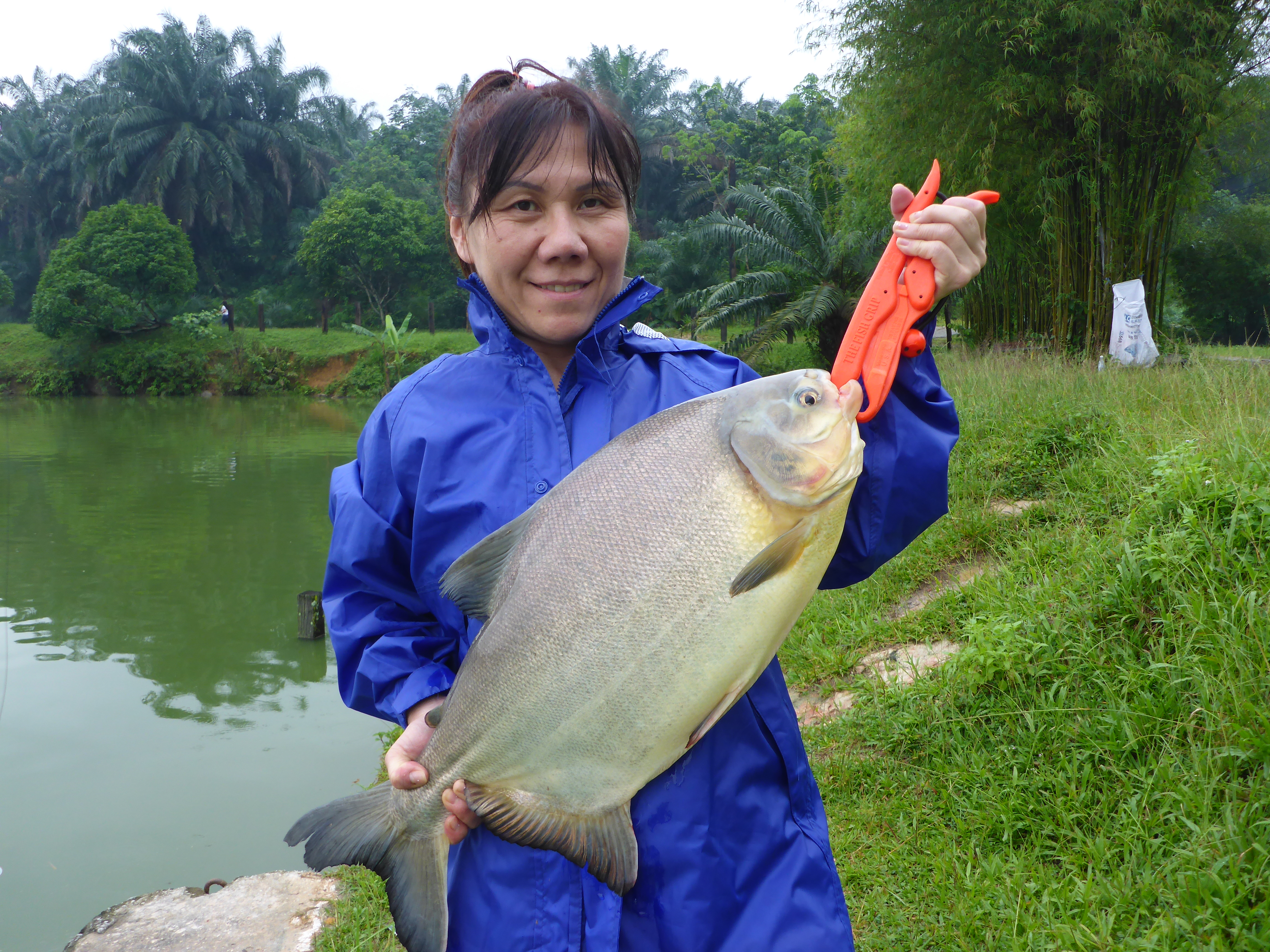 fish valley semenyih public holiday pacu 24 04 17 andrew